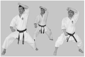 Kata is a formal exercise made up of karate techniques performed in set sequence.